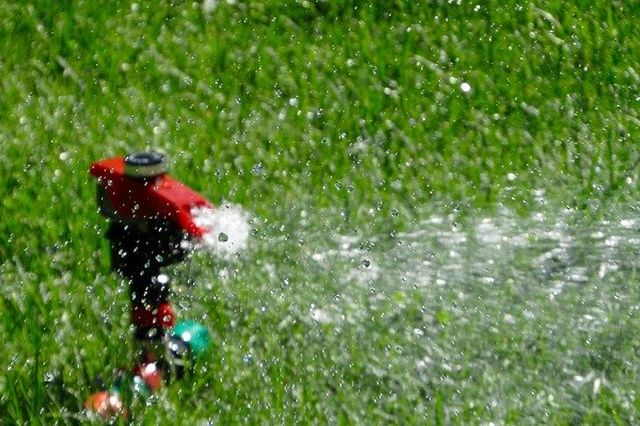 how much should you water the lawn