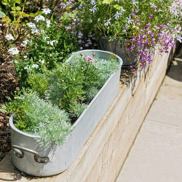 budget Garden Projects