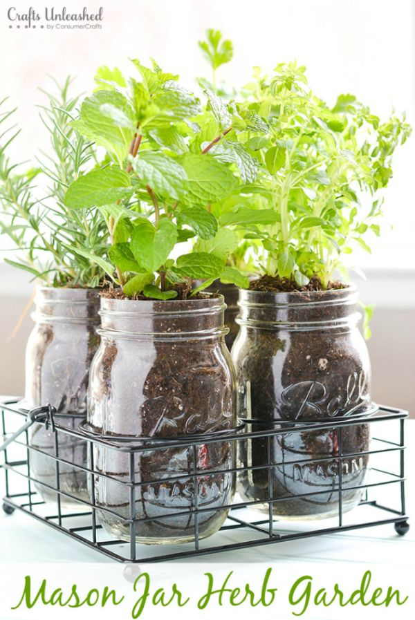 Apartment Mason Jar Garden