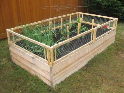 DIY Raised Garden Bed with Gate