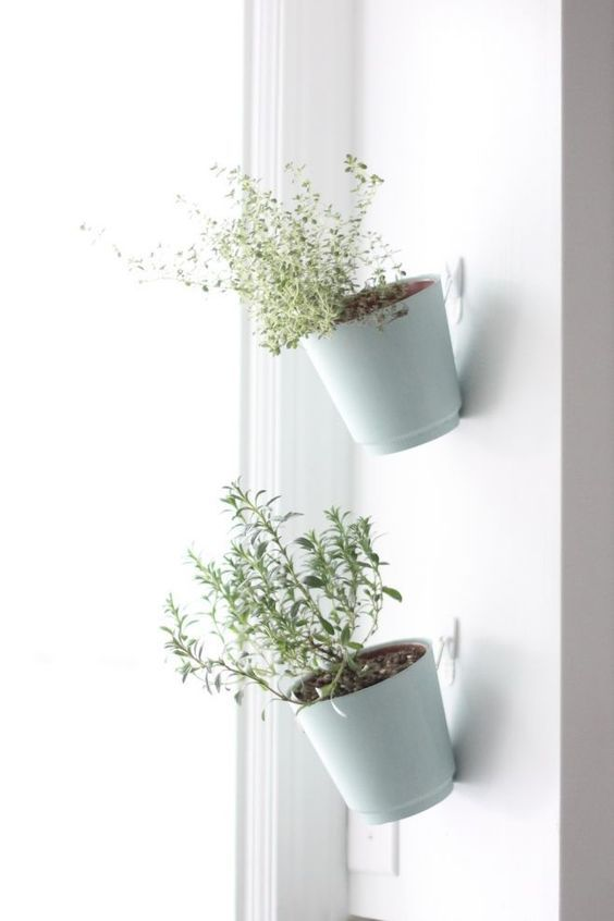 DIY Wall Hanging Pots