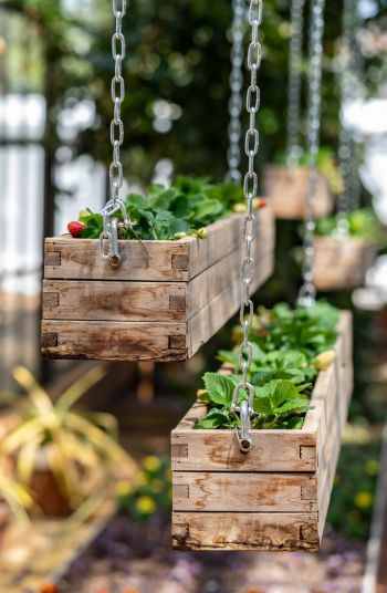 Hanging DIY Wooden Planter Boxes