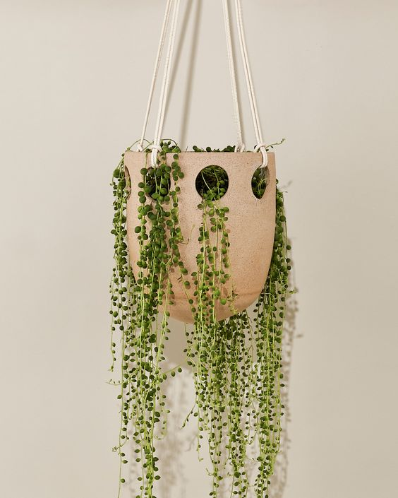 Oblong Hanging Planter
