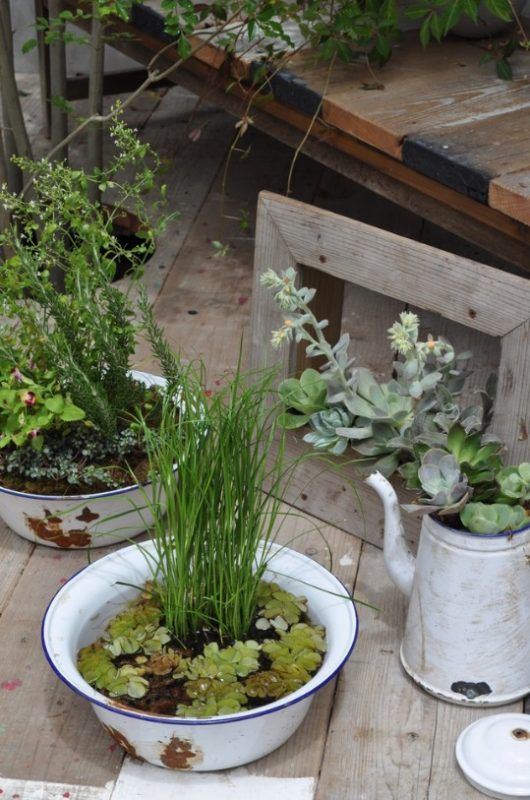 Water Gardens from Repurposed Bins and Pitchers