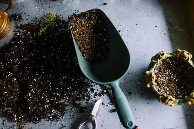 How to Test Soil in the Home Garden